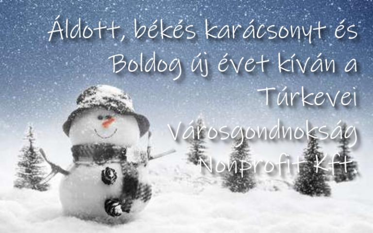 Áldott, békés karácsonyt és boldog új évet kívánunk!